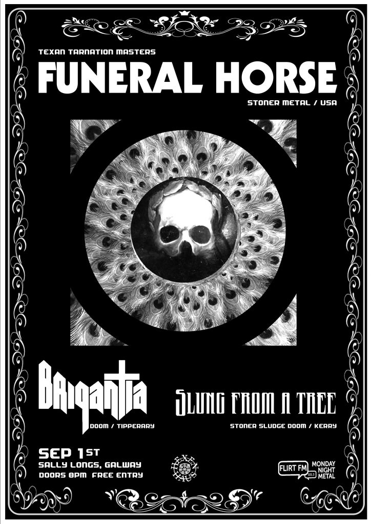 Funeral Horse in Galway presented by Hexen Haus